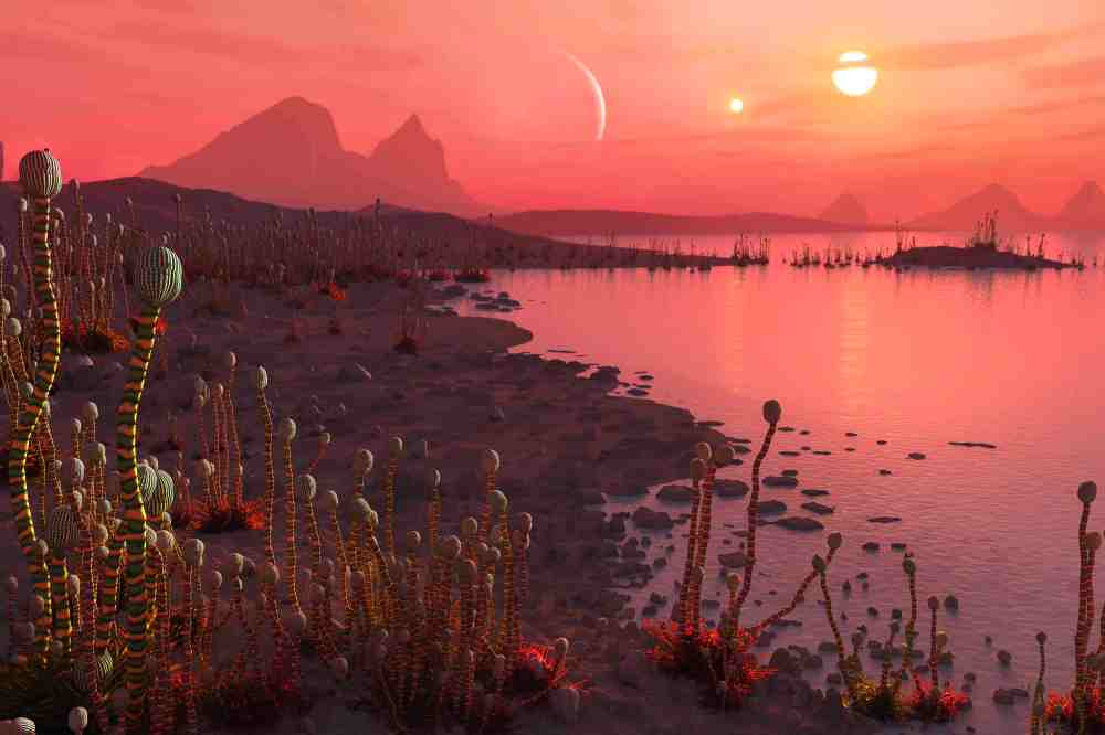 Exoplanet in binary system